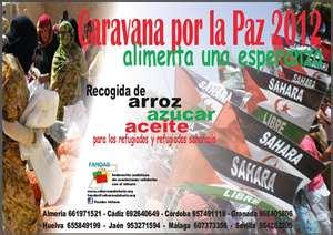 20120117131916-sahara.jpg
